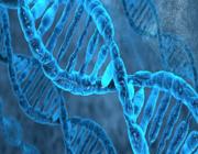 Leidraad farmacogenetica voor de dagelijkse psychiatrische praktijk