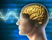 Toxische werking van medicijnen en genotsmiddelen op het centrale zenuwstelsel
